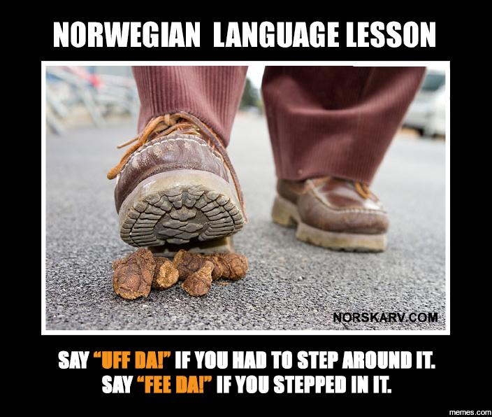 Image result for norwegian memes
