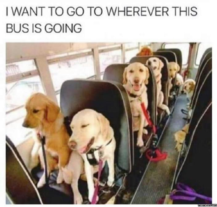 I want to go wherever this bus is going…