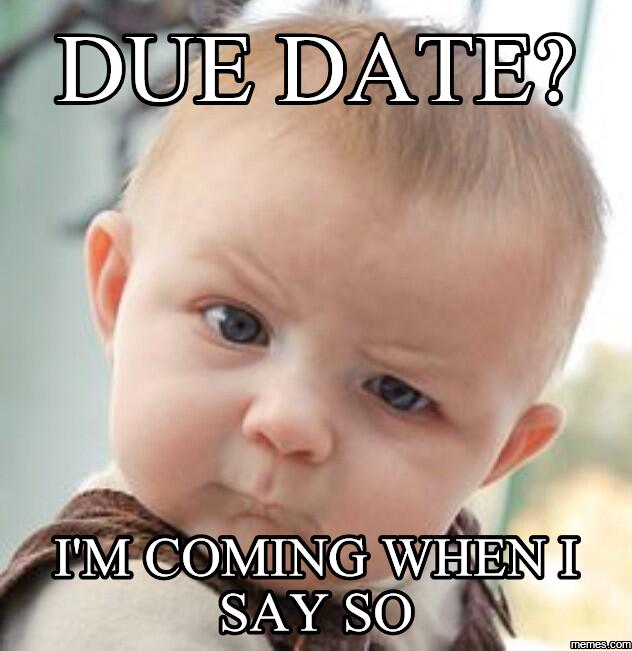 Due date meme in Brisbane