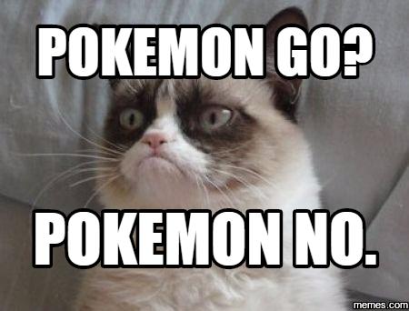 Cat Memes  Grumpy Cat