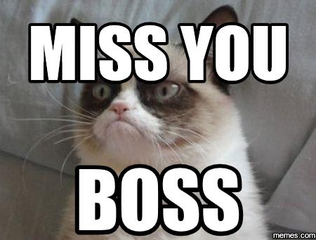 Grumpy Cat I Miss You Meme