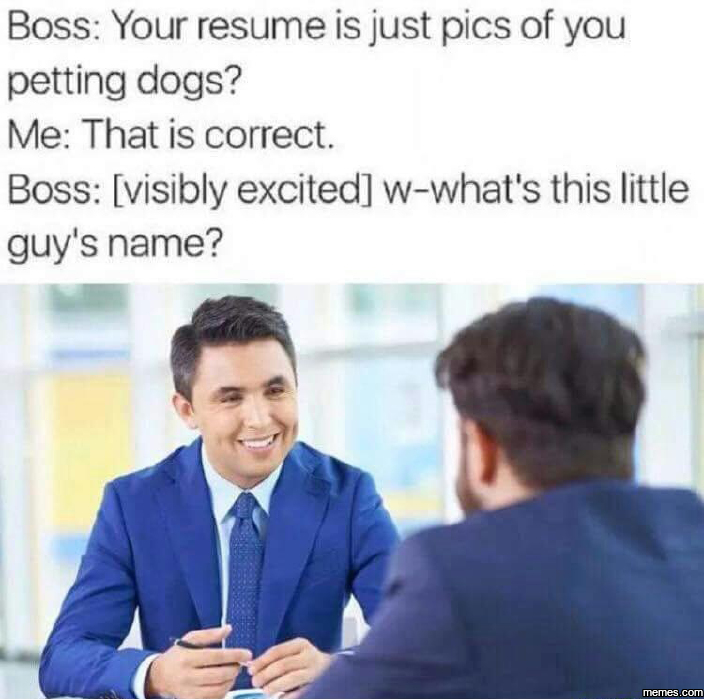 Your resume is just pics of you petting dogs