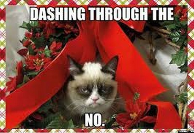 Image result for dashing through the no