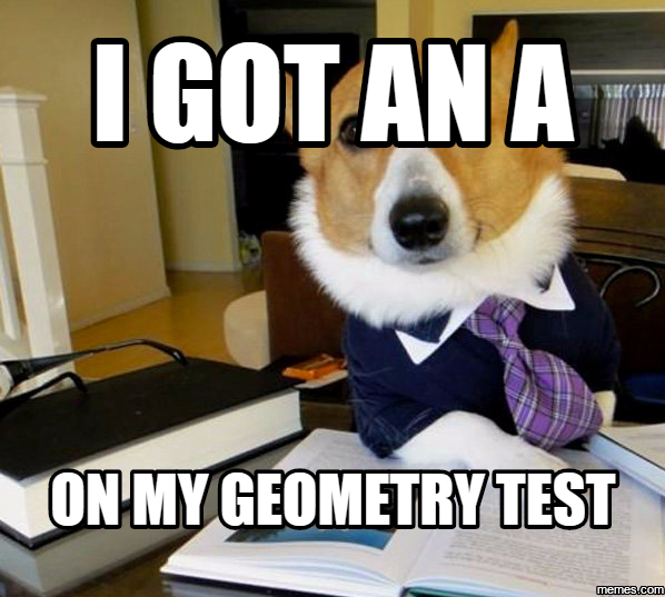 1296916 lawyer dog hilarious pictures with captions,Geometry Memes