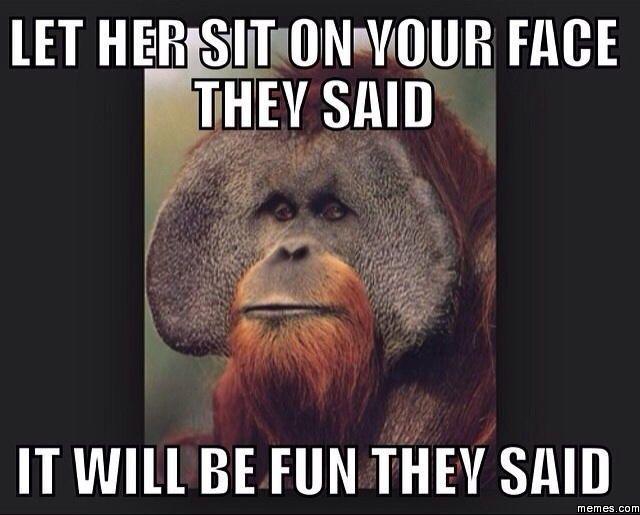 212683 let her sit on your face memes com,Your Face Meme