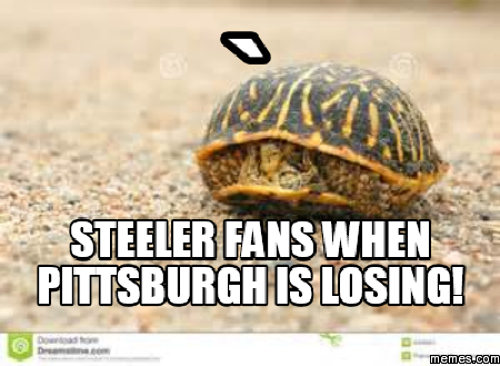 399105 home memes com,Steelers Lose Meme