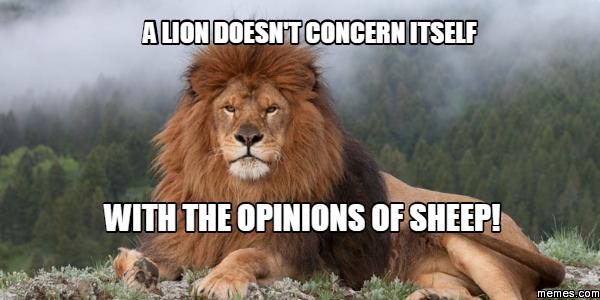 414051 home memes com,Lions Meme