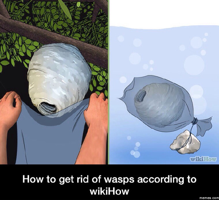 Wikihow Funny Pictures >> Home | Memes.com