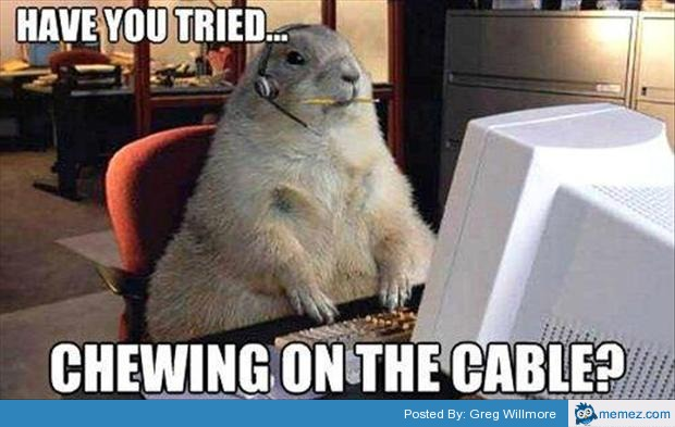 46811 have your tried chewing the cable memes com,Cable Meme