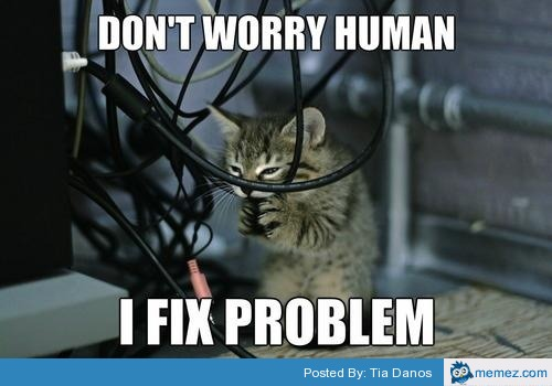 Cat fixing the computer memes cat fixing the computer sciox Image collections