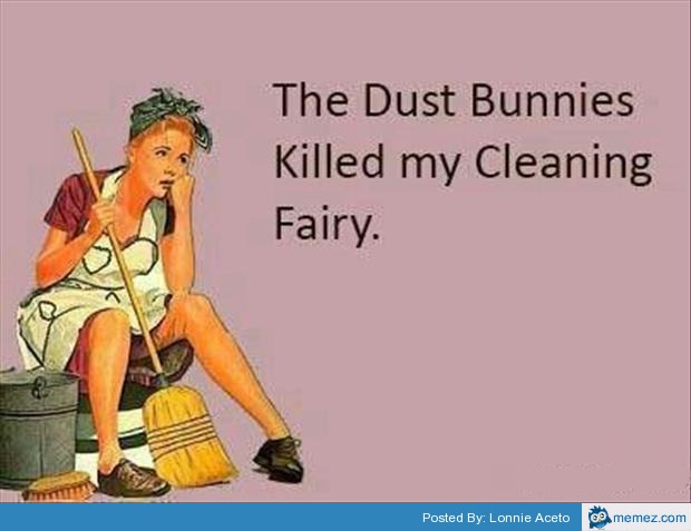 Image result for DUST BUNNIES killed my cleaning
