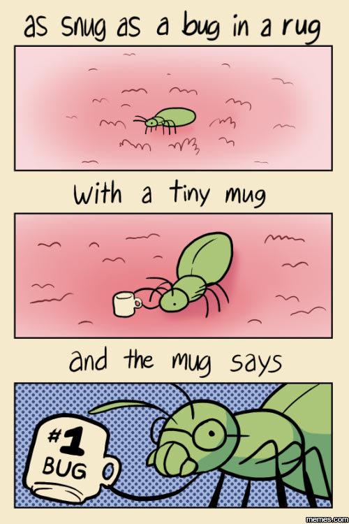 as snug as a bug in a rug   memes