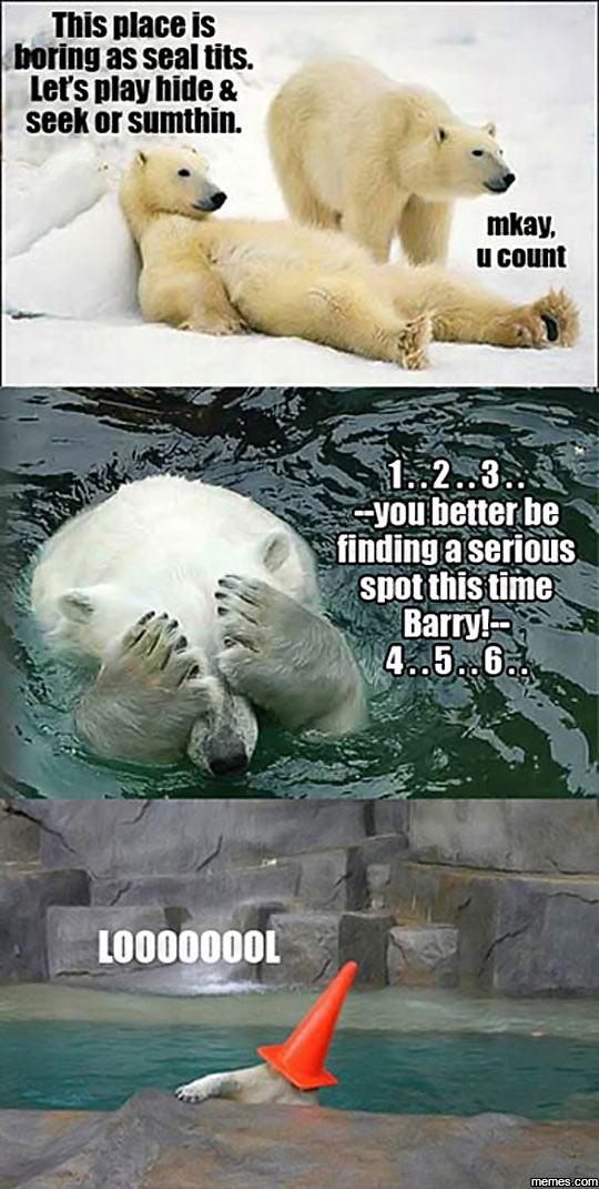 Funny Zoo Memes : Home memes