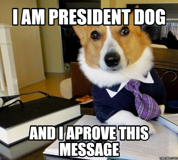 Image result for dogs dressed as president