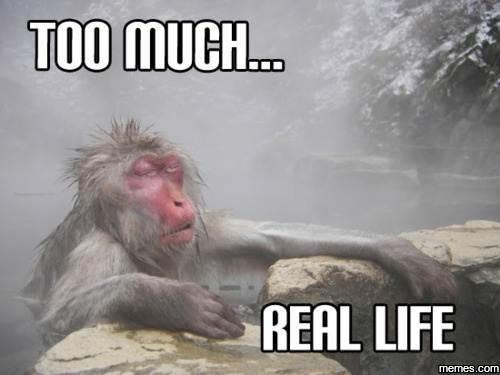 Funny Meme Real Life : Home memes