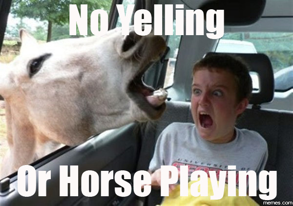 785232 no yelling or horse playing memes com,Meme Yelling