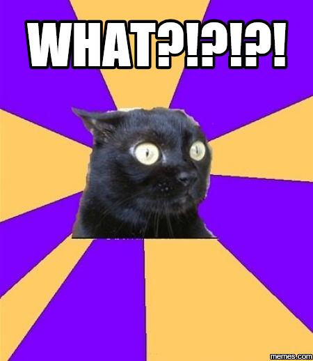 chronic anxiety cat meme - photo #6