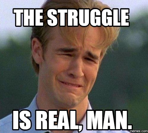 956224 home memes com,The Struggle Is Real Meme