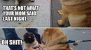 How dog fights really start