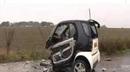 Smart Car hit a squirrel