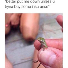 Better put me down