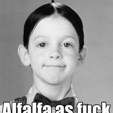 Alfalfa as f**k...