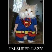 I'm super lazy today...