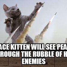 Peace kitten will see peace...