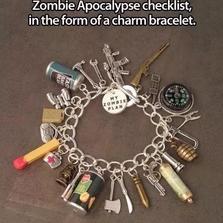 Zombie Apocalypse checklist...