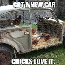 Got a new car chicks love it...