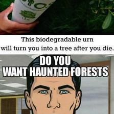 Do you want haunted forests...
