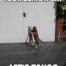 Let's tango...