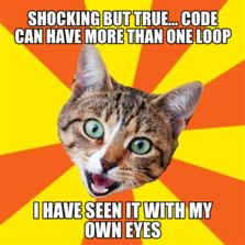 Shocking but true... Code can have more than one Loop I have seen it with my own eyes