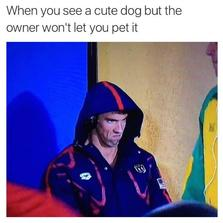 When you see a cute dog...
