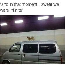I swear we were infinite...