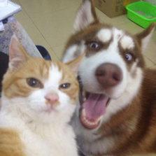 Drunken Selfies
