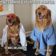 The Lab Results Are Back