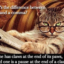 Cats And Commas