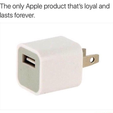 The only apple product that lasts forever