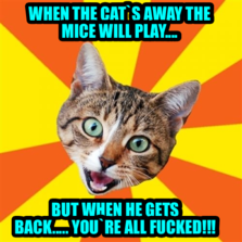 When the cat`s away the mice will play.... But when he gets back..... you`re all fucked!!!