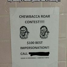 Roar Contest Entries