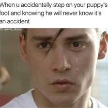 Noooooooo