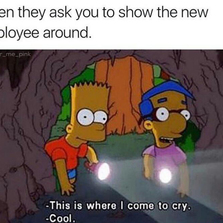 Showing the new employee around