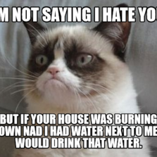 im not saying i hate you  but if your house was burning down nad i had water next to me, i would drink that water.
