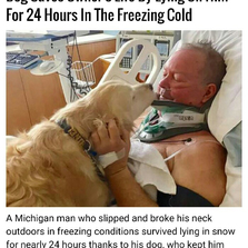 Do saves owners life