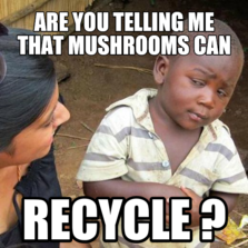 Skeptical African Kid | Hilarious pictures with captions