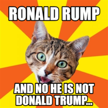 RONALD RUMP AND NO HE IS NOT DONALD TRUMP...