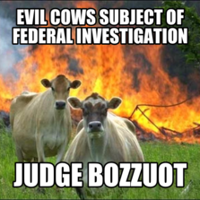 Evil Cows subject of federal investigation judge bozzuot