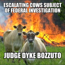 escalating Cows subject of federal investigation judge dyke bozzuto
