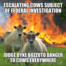 escalating Cows subject of federal investigation judge dyke bozzuto danger to cows everywhere
